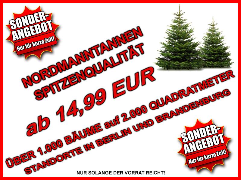 Weihnachtsbaum Verkauf Berlin